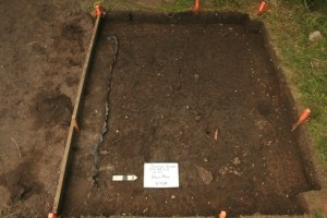 The first level of the latrine excavation