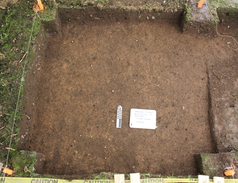 A 2-meter square unit excavated to subsoil