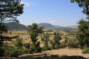 A view of the çanaklı basin from the pine forests on the east end of the basin