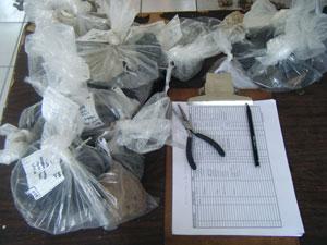 La separación es necesaria en esta fase de la investigación para el correcto registro y conteo de los materiales arqueológicos